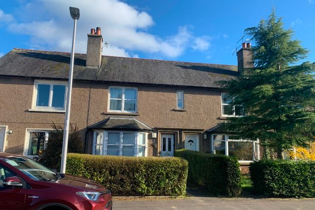 2 bed semi-detached house to rent in Orchard Road, Bridge Of Allan, Stirling FK9