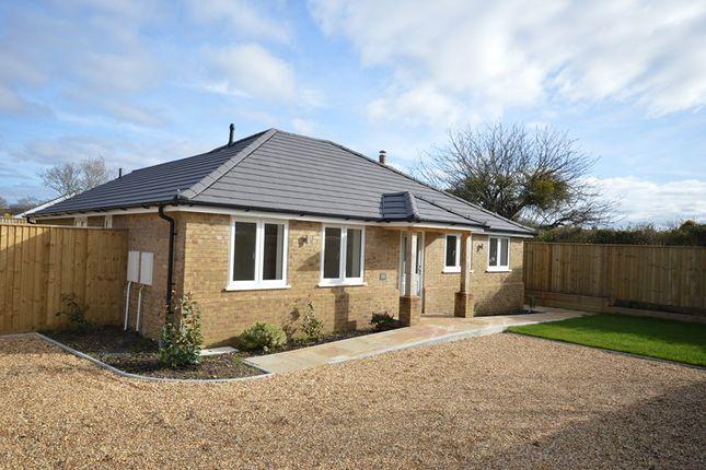 Thumbnail Detached bungalow to rent in Lavender Road, Hordle, Lymington