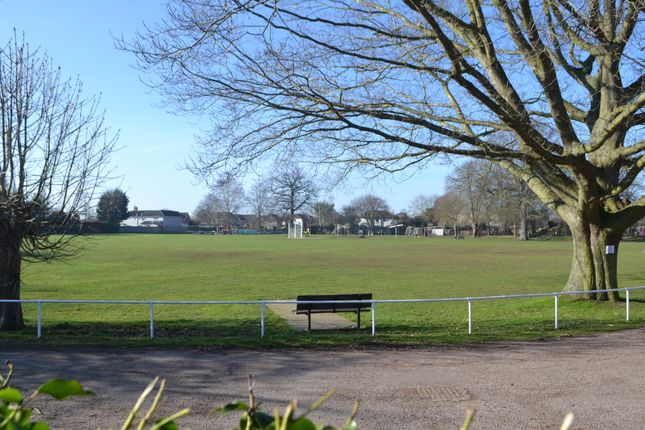 View Over Playing Field
