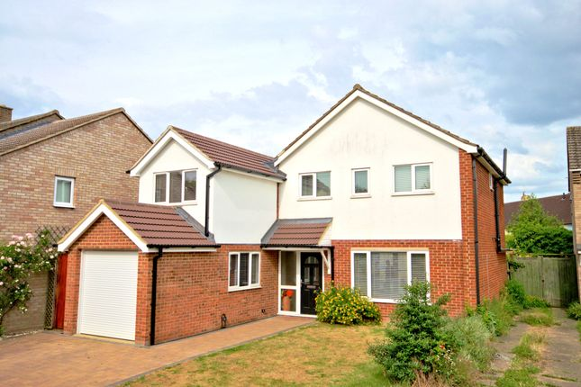 Detached house to rent in Scotsdowne Road, Trumpington, Cambridge
