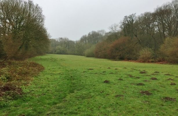 Thumbnail Land for sale in Land At Wrekin Golf Club, Golf Links Lane, Wellington, Shropshire