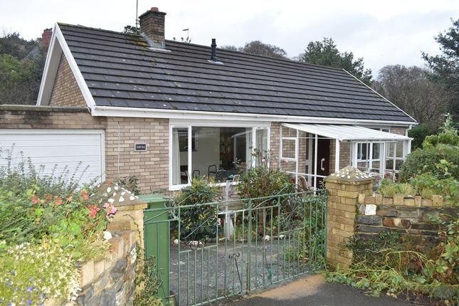 Thumbnail Detached bungalow to rent in Parcyronnen, Llanbadarn Fawr, Aberystwyth