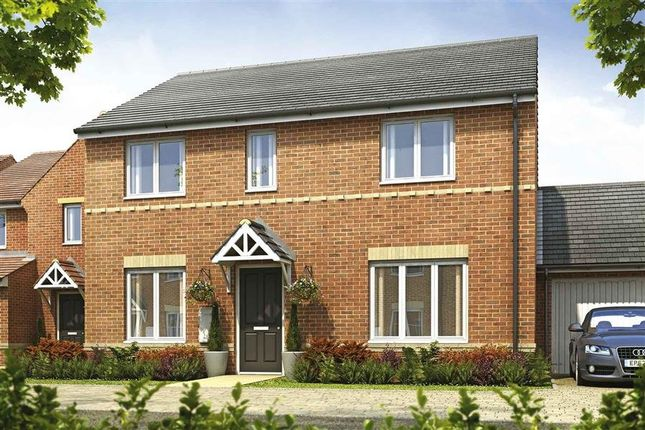 Thumbnail Detached house for sale in Plot 191, Shelford, Hele Park