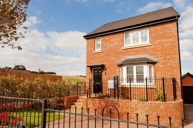 Thumbnail Detached house for sale in Lon Masarn, Ty Coch, Swansea