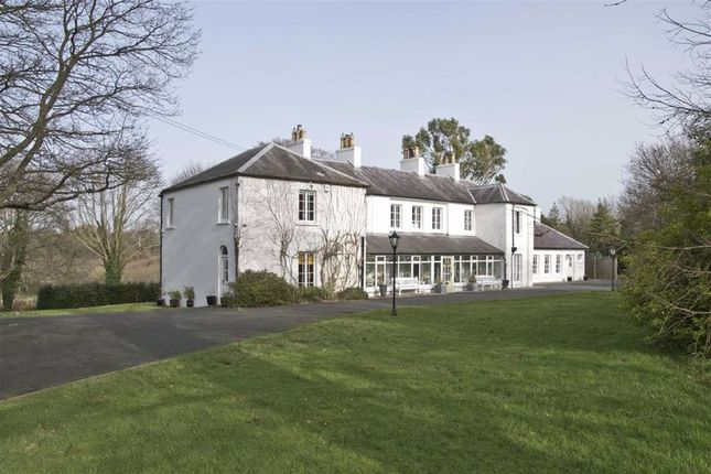 Thumbnail Detached house for sale in Quoile Brae, Downpatrick, Co. Down