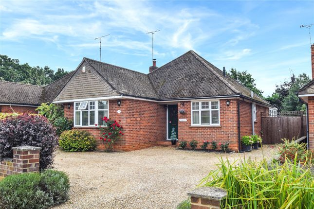 Thumbnail Detached bungalow for sale in Maple Drive, Crowthorne, Berkshire