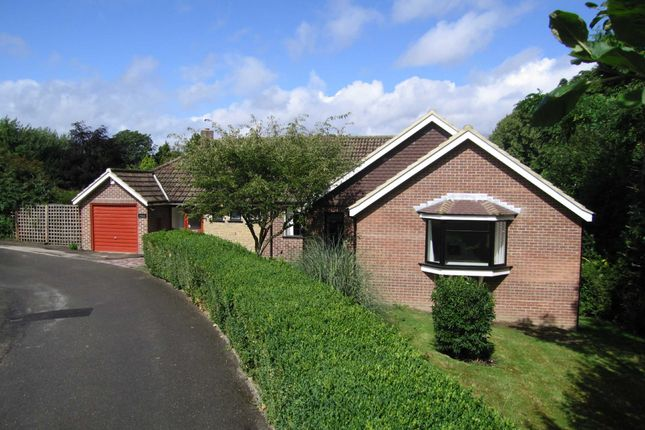 Thumbnail Detached bungalow to rent in Bonchester Close, Chislehurst