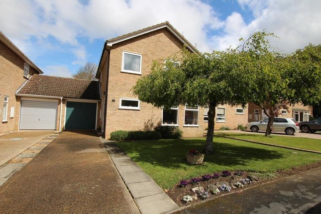 Thumbnail Link-detached house for sale in Fleetwood, Ely