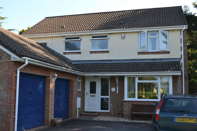 Thumbnail Detached house to rent in Maple Grove, Roundswell, Barnstaple