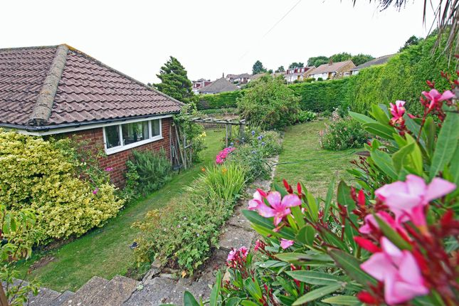 Thumbnail Detached bungalow for sale in Eridge Road, Eastbourne