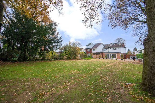 Thumbnail Semi-detached house for sale in Park Lane, Bishop's Stortford, Hertfordshire
