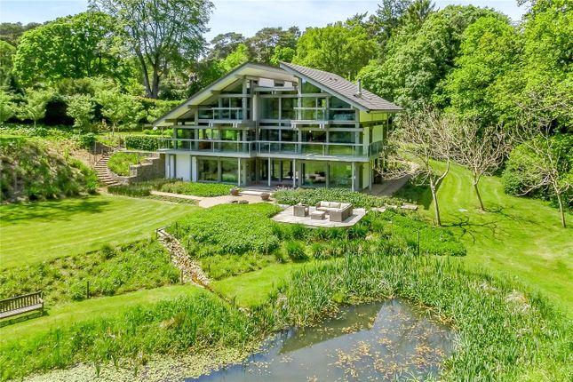 Thumbnail Detached house for sale in Leigh Lane, Farnham