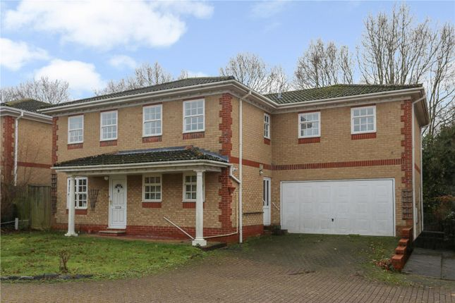 Thumbnail Detached house for sale in Westfield Close, Horton Heath, Eastleigh