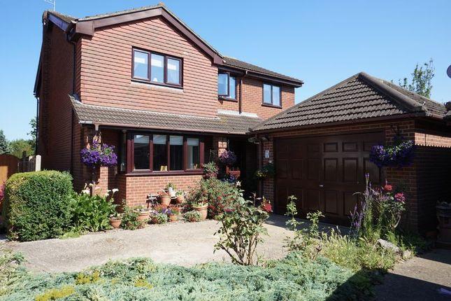 Thumbnail Detached house for sale in Thornbridge, Benfleet