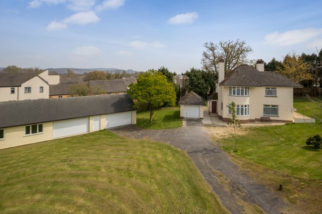 Thumbnail Detached house for sale in Exeter Road, Newton Abbot