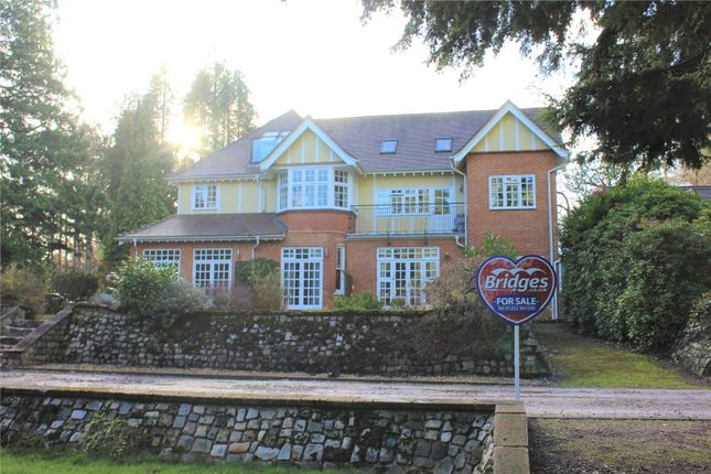 Picture No. 39 of The Woodlands, Pirbright Road, Normandy GU3