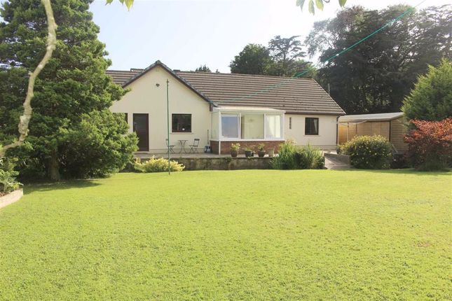 Thumbnail Detached bungalow for sale in Manorbier Newton, Tenby