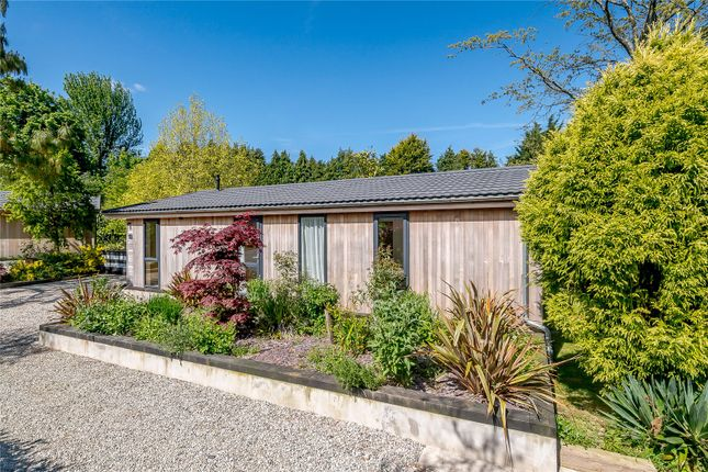 Thumbnail Detached house for sale in Palstone Lane, South Brent, Devon
