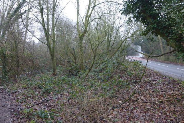 Thumbnail Land for sale in Fakenham Road, Beetley, Dereham, Norfolk
