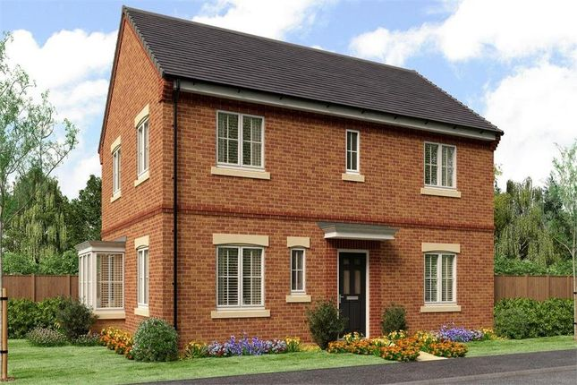 "Thumbnail Detached house for sale in ""The Stevenson"" at Buttercup Gardens, Blyth"