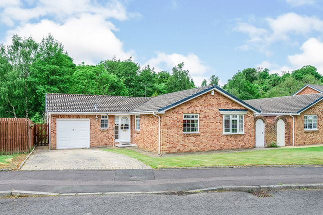 Thumbnail Bungalow for sale in Powforth Close, Larkhall, Lanarkshire