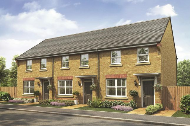 "Thumbnail Terraced house for sale in ""Archford"" at Whites Lane, New Duston, Northampton"