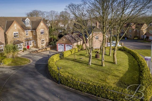 Thumbnail Detached house for sale in Paddock Close, Mansfield