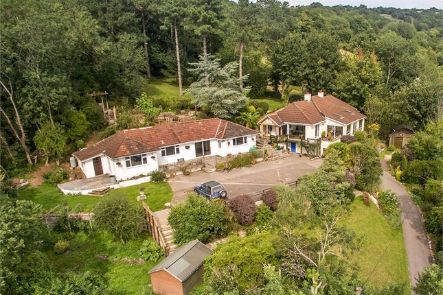 Thumbnail Detached bungalow for sale in Blue Moon And The Clangers, Lynch Lane, Cheddar, Somerset