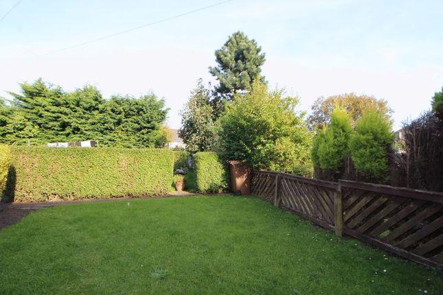Garden of Viceroy Street, Kirkcaldy KY2
