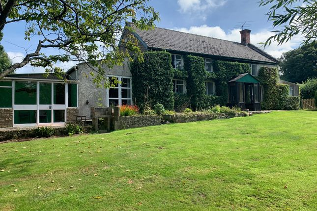 Thumbnail Detached house for sale in Lodge Lane, Axminster
