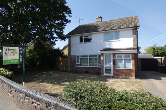 Thumbnail Detached house to rent in Meynell Walk, Netherton