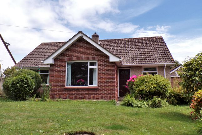 Thumbnail Detached bungalow for sale in Stafford Lane, Colyford, Colyton