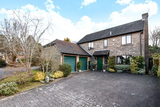 Thumbnail Detached house for sale in Keepers Wood, Summersdale, Chichester
