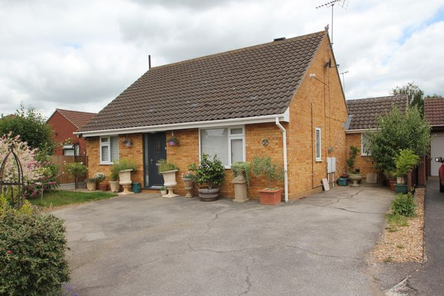Thumbnail Detached bungalow for sale in Clara Reeve Close, Colchester