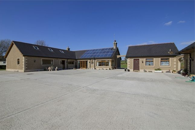 Thumbnail Detached bungalow for sale in Bridge Road, Lurgan, Craigavon, County Armagh