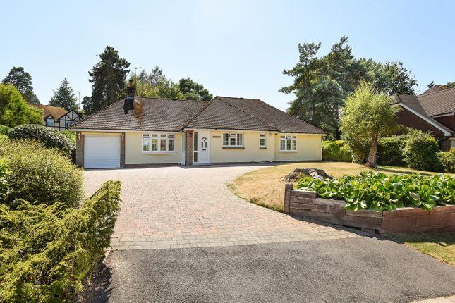 Thumbnail Detached bungalow to rent in Chestnut Close, Storrington