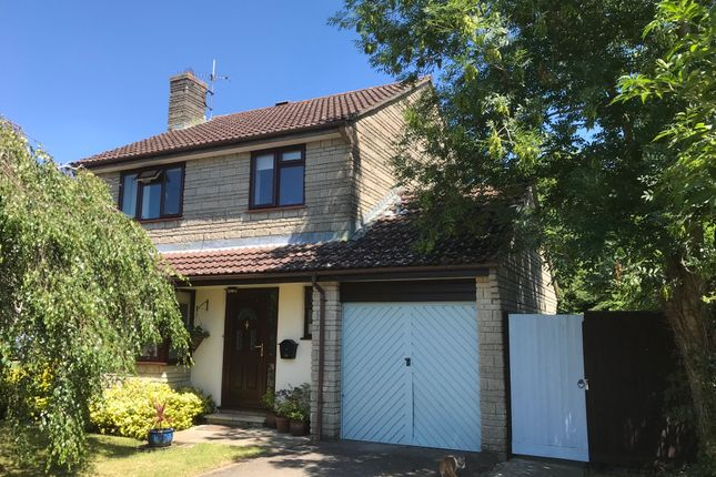 Thumbnail Detached house for sale in Ash Grove, Mere, Warminster