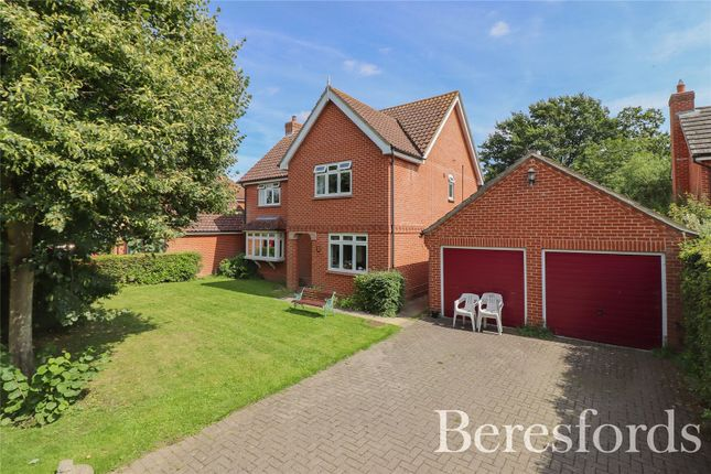 Thumbnail Detached house for sale in Harp Meadow Lane, Colchester