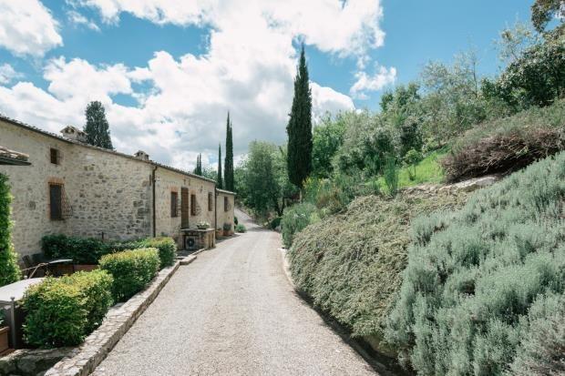 Picture No. 13 of Podere Morelli, Radda In Chianti, Tuscany, Italy