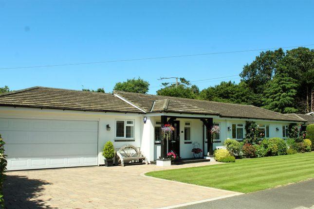 Thumbnail Detached bungalow for sale in Ash Close, Brookmans Park, Hatfield