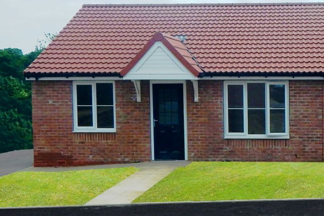Thumbnail Semi-detached bungalow for sale in Hermitage Grove, Middleton St George, Darlington