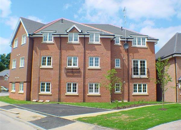Thumbnail Flat to rent in Hawthorn Way, Lindford, Bordon