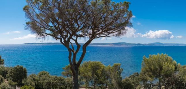 Thumbnail Land for sale in Ste Maxime, Var, France