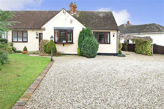 Thumbnail Semi-detached bungalow for sale in Jubilee Avenue, Chelmsford, Essex
