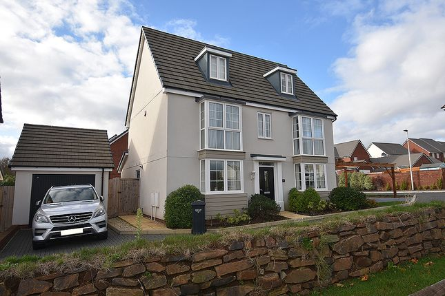 Thumbnail Detached house for sale in Newcourt Way, Rydon Lawns, Exeter