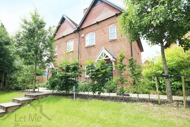 Thumbnail Semi-detached house to rent in King Harry Lane, St.Albans