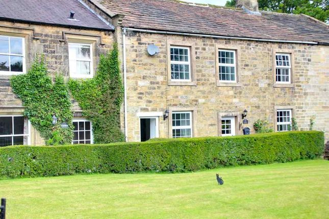 Thumbnail Terraced house to rent in The Green, Bewerley, Harrogate