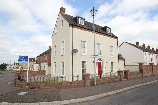 Thumbnail Detached house for sale in Blackrock Lane, Newtownabbey