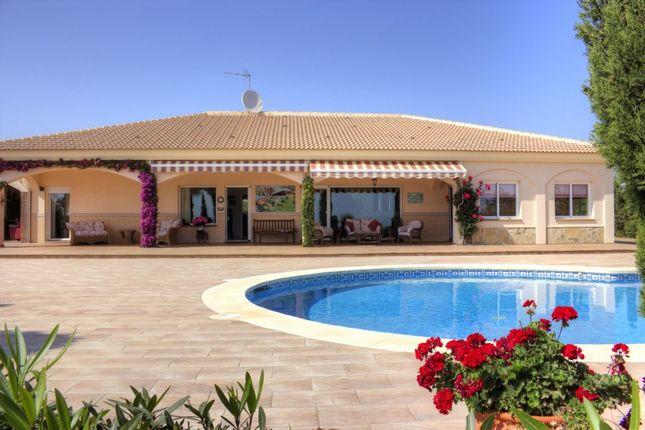 Thumbnail Villa for sale in Spain, Málaga, Vélez-Málaga, Almayate