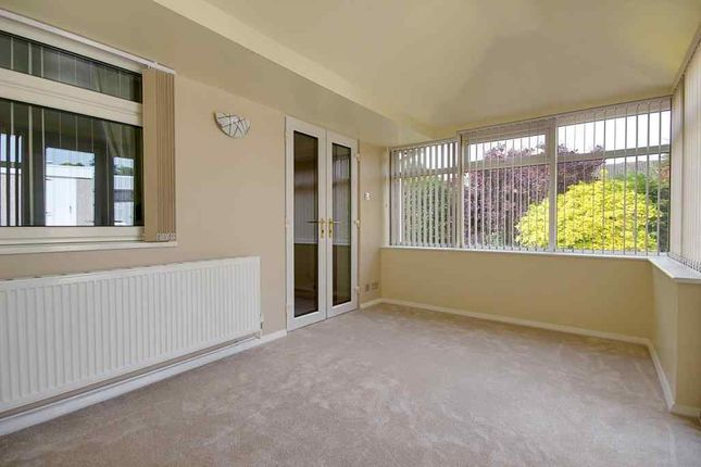 Thumbnail Semi-detached bungalow to rent in Garsdale Road, Knaresborough